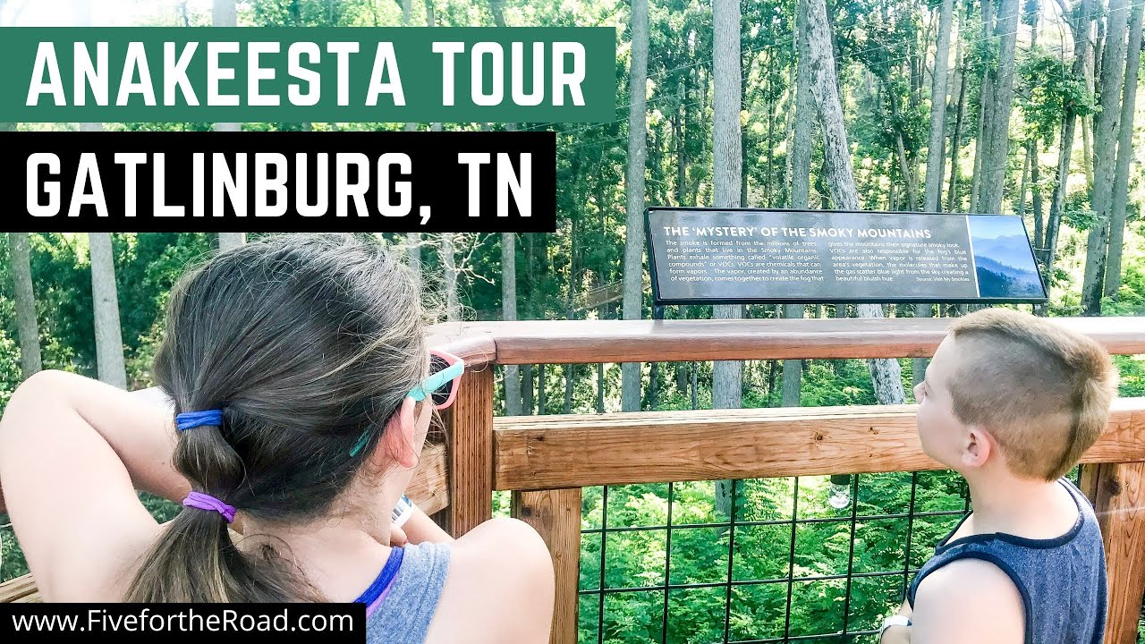 Anakeesta Gatlinburg Must Be Part of Your Tennessee Family