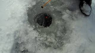 Зимняя рыбалка на Белом озере февраль