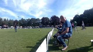 UFO World Championship Small dogs, T&C, 16-9-19 Apeldoorn The Netherlands  9th place