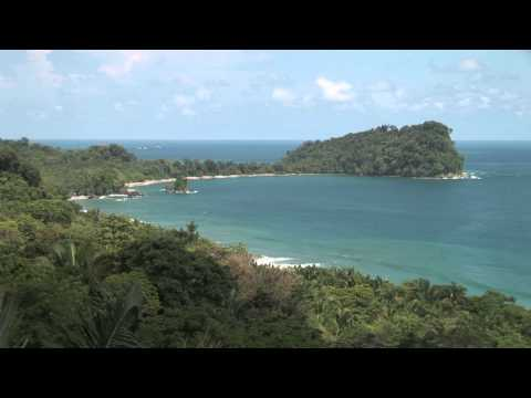 Stock Footage - Tropical rainforest and the ocean with waves