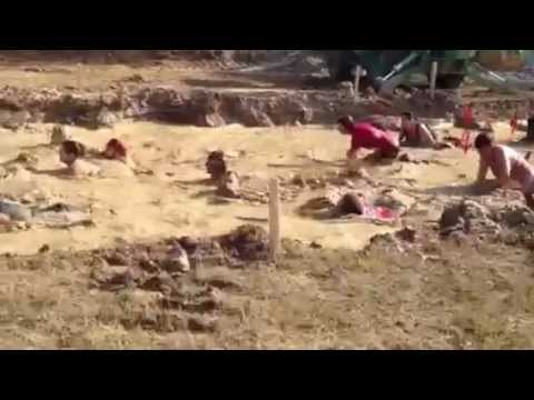 Warrior Dash Louisiana 2012 Muddy Mayhem