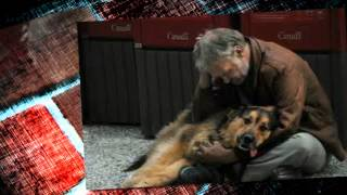 Ông Lão Và Con Chó Ngoan
