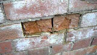 Spalling Brickwork caused by frost damage.
