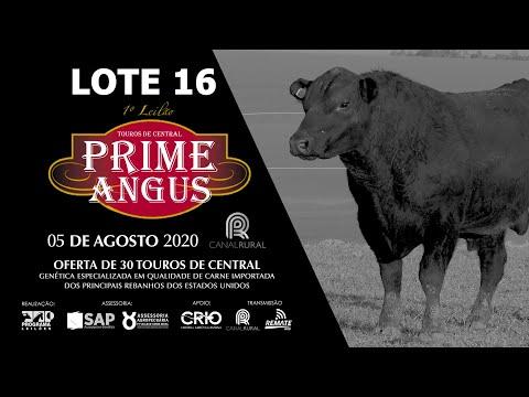 LOTE 16   BLACK OPAL TE907 BARBARO Prod  Agência El Campo