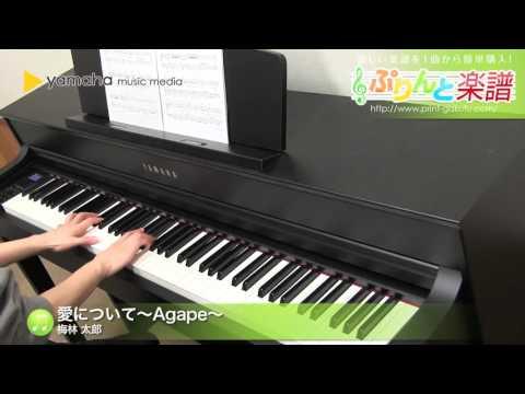 愛について〜Agape〜 梅林太郎