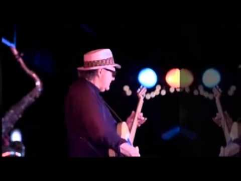 Upper Mississippi Shakedown - The Lamont Cranston Blues Band