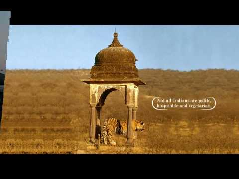 Incredible India Tours, Travel, 2011