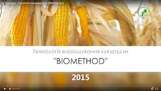 №29 Кукурудза   Технологія вирощування БІОМЕТОД
