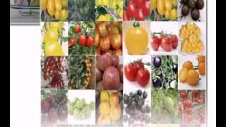 цены на семена овощей(http://goo.gl/6XT3nS Самый большой выбор семян! Заходите, в крупнейший интернет-магазин!, 2015-02-09T20:57:29.000Z)