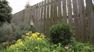 Installing A Fence | Types Of Fencing | Kudzu.com