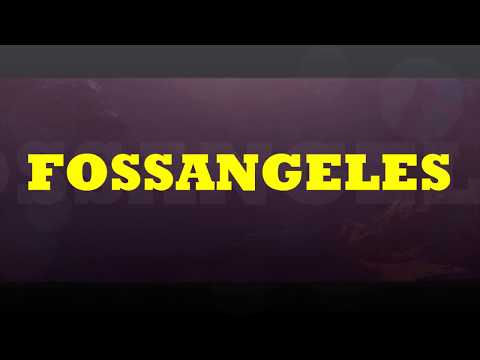 FOSSANGELES  (Video Musicale Divertente) Citta' di Fossano (CN)   By  Zuu
