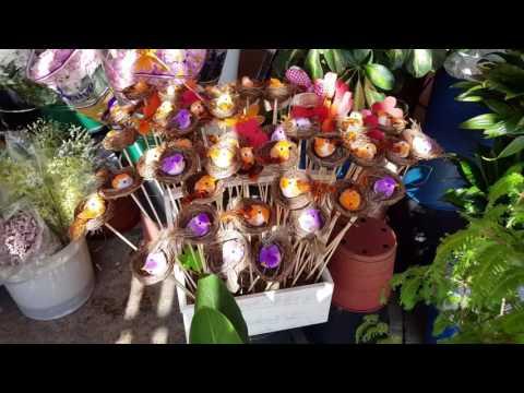 Купить цветы дешево Тюмень / цветочный дисконт центр в Тюменииз YouTube · Длительность: 2 мин1 с  · Просмотров: 4 · отправлено: 27.12.2017 · кем отправлено: Аллея Цветов
