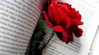 Nezmaři - Růže