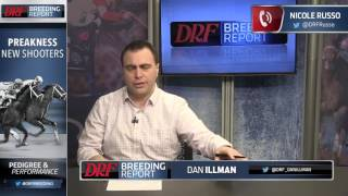 DRF Breeding Report - Preakness New Shooters (5/16/17)