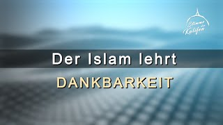 Der Islam lehrt Dankbarkeit | Stimme des Kalifen