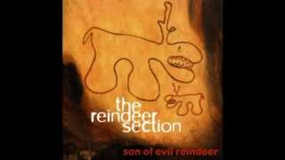Watch Reindeer Section You Are My Joy video