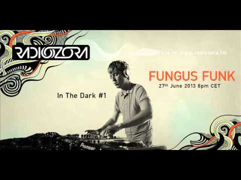 In The Dark #1 with FUNGUS FUNK on radiOzora - 2013