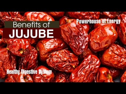 Top 10 Health BENEFITS OF JUJUBE FRUIT - YouTube