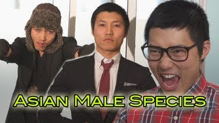 Asian Male Species