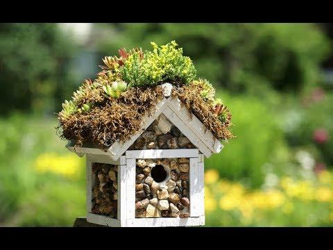 Скворечник для птиц своими руками фото оригинальные идеи