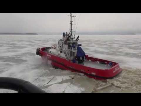 Damen Ice Class Tugs