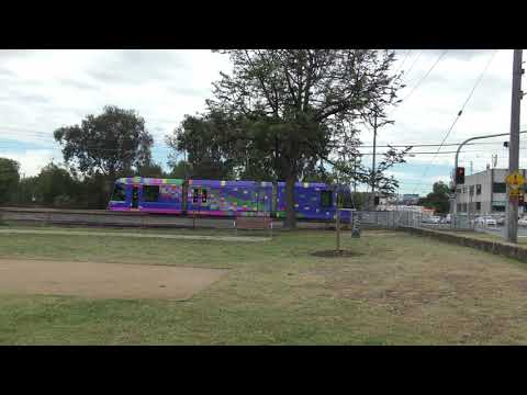 Melbourne Art tram Beautiful Stranger by Robert Owen C3008