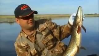 Ловля крупной щуки летом на спиннинг в реках России