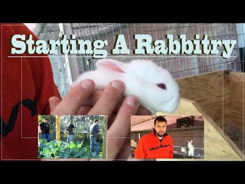 Starting A Rabbitry : Building Cages And Water System