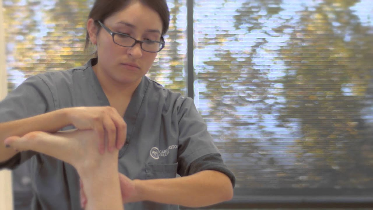 Healing Hands: Massage Therapy - YouTube