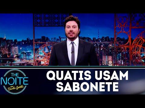 Monólogo: Quatis usam sabonete | The Noite (13/09/18)