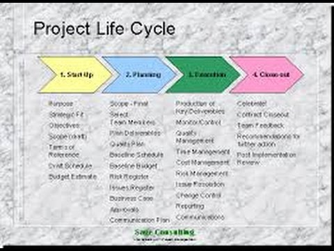 3.Project Life Cycle