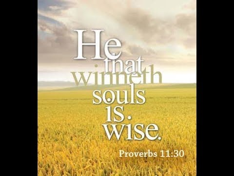Why Soul Winning: Introduction to Instructional Series (RBC a KJ ONLY IFB) 20418