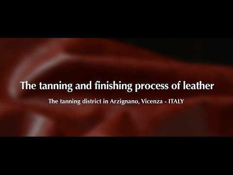 The Tanning and Finishing Process of Leather