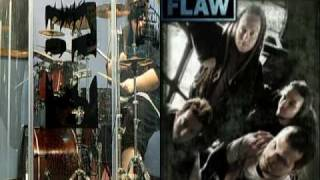 Flaw Whole drum cover
