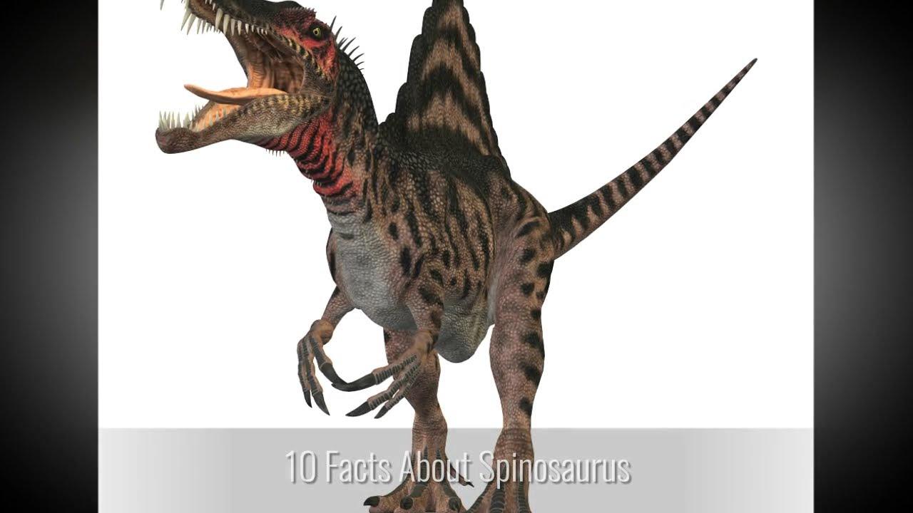 Dinorube
