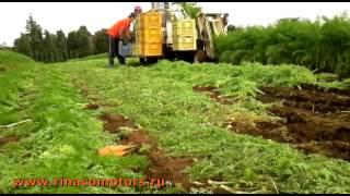 Комбайн для уборки моркови Yanmar HN2 - видео!(, 2014-11-26T21:18:30.000Z)