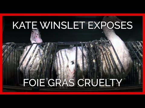 Kate Winslet Exposes Foie Gras Cruelty