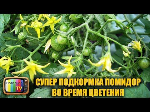 СУПЕР ПОДКОРМКА ПОМИДОР