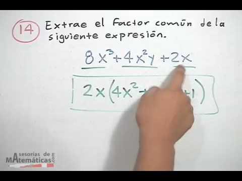 Factorización por factor común│ejercicio 2 - YouTube