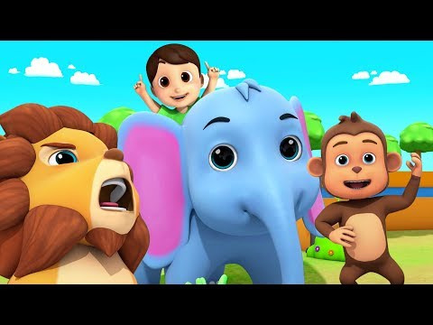 Going To The Zoo | Nursery Rhymes & Kids Songs | Zoo Song | Baby Rhyme