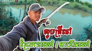 ស្ទូចត្រីនៅ ព្រែកតាសៅ/ទាហ៊ានសៅ (Stream Fishing At Prek Tasao)   Fishing Vlog S2 #37