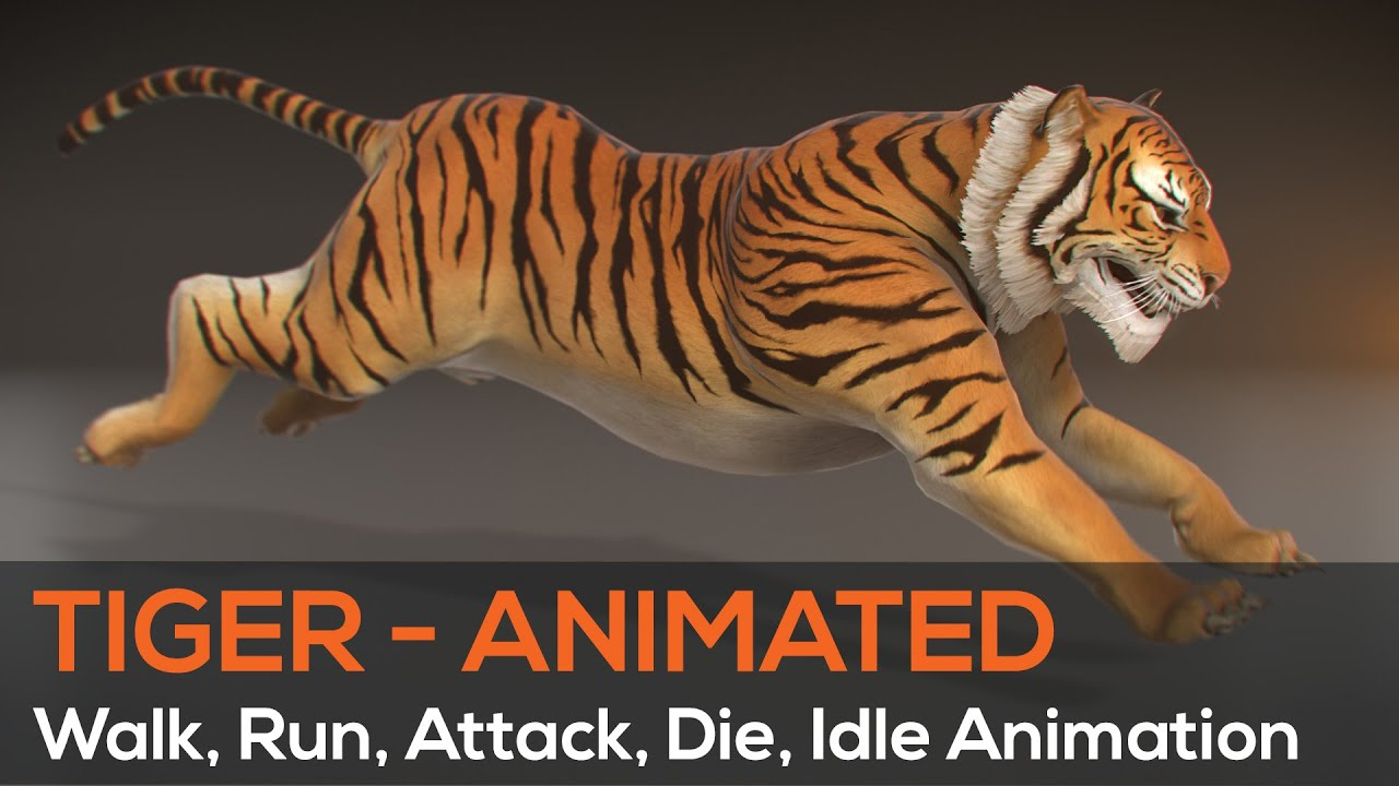 3d tiger (turntable animation) - maya, mudbox, e3d - youtube
