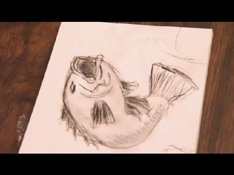How To Draw A Bass Fish Using Charcoal Pencil Art Tutorials