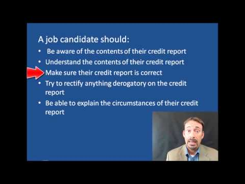 Credit Report Employment Background Checks