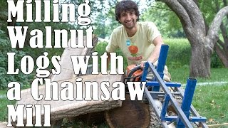 Milling Walnut Logs With A Chainsaw Mill