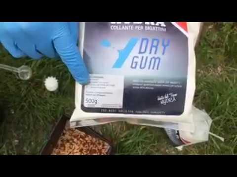 La nuova colla HYDRA DRY GUM per bigattini, contente Dry WATER