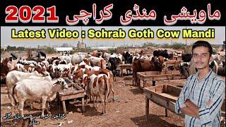 Sohrab Goth Mandi karachi 13 June 2021 Latest update ICow Mandi Price in 2021 II Kmi