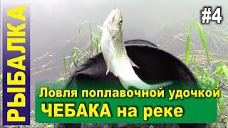 Рыбалка - Ловля чебака на реке поплавочной удочкой. Прикормка