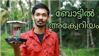 How to make betta fish tank at home| | Malayalam