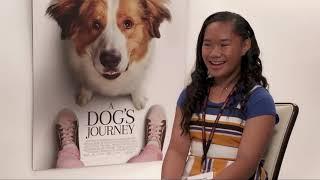 A Dog's Journey Interviews By Milika L.